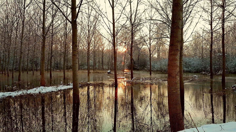 Paysage Auménancourt, la Suippe déborde en hiver